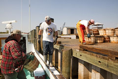 Fishermen unloading their catch Royalty Free Stock Photos