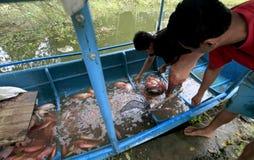 Fishermen Royalty Free Stock Images