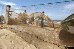 Fishermen and women sort fish from their nets on the beach at Negombo in Sri Lanka. Negombo has one of the largest fishing fleets in Sri Lanka Stock Photos