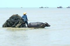 Fishermen are working royalty free stock photo