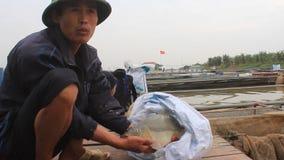 Fishermen working at fish farm stock video footage
