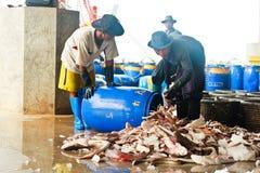Fishermen working in harbor Royalty Free Stock Photos
