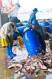 Fishermen working in harbor Stock Images