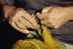 Fishers hands take fish out of a net Royalty Free Stock Image