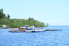 Fishers harbor on sea in Waisai. Small harbor with flowing house in middle of bay with fishers boats in Waisai (Raja Ampat, Papua Barat, Indonesia Royalty Free Stock Image