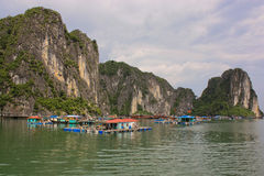 Fishers houses in Halong Bay, Vietnam. View from the water of a few houses where vietnamese fishers sell the fish Stock Photos