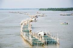 Fishery farm Stock Photos