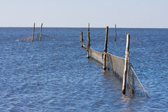 Fishery Nets. In the sea, th Netherlands royalty free stock photos