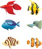 Fishes. Illustration, each fish is on separate layer Royalty Free Stock Photo