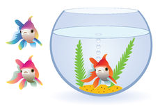Fishes. Vector aquarium and three fishes Stock Images