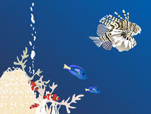 Fishes. Vector illustration of fishes in ocean Stock Image