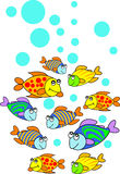 Fishes. Isolated line art work Stock Image