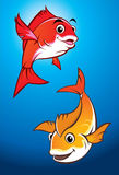 Fishes Royalty Free Stock Images