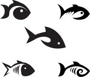 Fishes. Royalty Free Stock Images