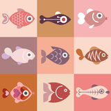 Fishes Stock Images