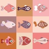 Fishes. Aquarium fishes - vector illustration, isolated design elements Stock Images