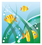 Fishes. The stylized figure of three fishes floating in a reservoir with seaweed. It can be used as a background or a part of a composition Royalty Free Stock Image