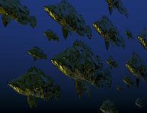 Fishes. Digital rendering: shoal of fish Stock Photos