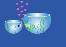 fishes in aquariums love each other Royalty Free Stock Photos