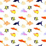 The fishes background Royalty Free Stock Photo