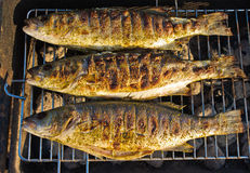 Fishes on the BBQ Royalty Free Stock Images