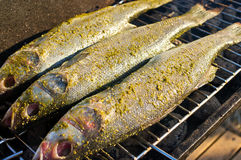 Fishes on the BBQ Royalty Free Stock Image