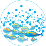 Fishes & blue bubbles. Illustrate fishes and blue bubbles in circular like bowl Royalty Free Stock Image