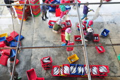 Fishes are collected and sorted into baskets before loading onto the truck at the Hon Ro seaport, Nha Trang city Stock Image