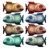 Fishes in different colors Stock Image