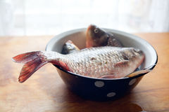 Fishes in the dish or bowl on the table in the kitchen Royalty Free Stock Image
