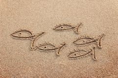 Fishes drawn on a beach sand. Flock of fishes drawn on a beach sand Royalty Free Stock Photography