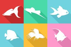 Fishes flat design Stock Photography