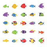 Fishes Flat Vector Icons Set vector illustration