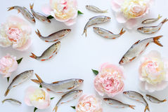 Fishes and flowers background Royalty Free Stock Image