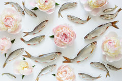 Fishes and flowers pattern Royalty Free Stock Image