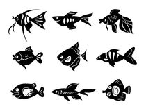 Fishes icon set. Black and white illustration Royalty Free Stock Photo