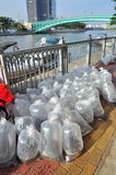 Fishes are kept in plastic bags preparing to be released in the Saigon river in the National Fisheries day in Vietnam Royalty Free Stock Image