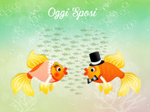 Fishes in love Royalty Free Stock Photos