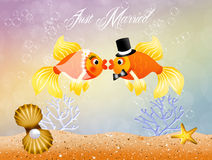 Fishes in love Royalty Free Stock Photography
