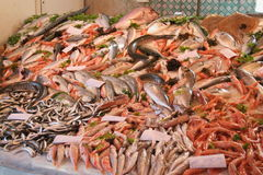 Fishes on a market Stock Image