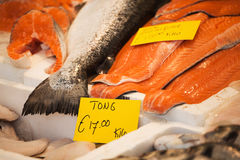 Fishes at the market Royalty Free Stock Images