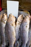 Fishes on the markets of Western Hong Kong with empty price tag royalty free stock photos