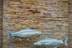 Fishes and pattern of old decorative stone wall background. Vintage stone wall Texture in weathered and have fish sculptures for. Design background. Featured royalty free stock photos