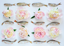 Fishes and peonies pattern Stock Images