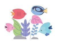 Fishes with plants foliage wild scene. Vector illustration stock illustration