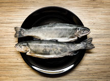 Fishes on the plate. Trout on the black plate stock photography