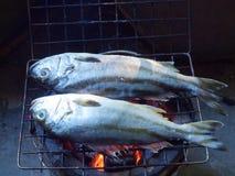 Fishes roasting Royalty Free Stock Photos
