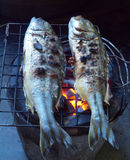 Fishes roasting Royalty Free Stock Photo