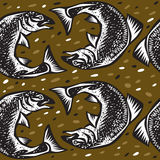 Fishes rolled ring Royalty Free Stock Images