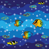 Fishes in the sea Stock Image